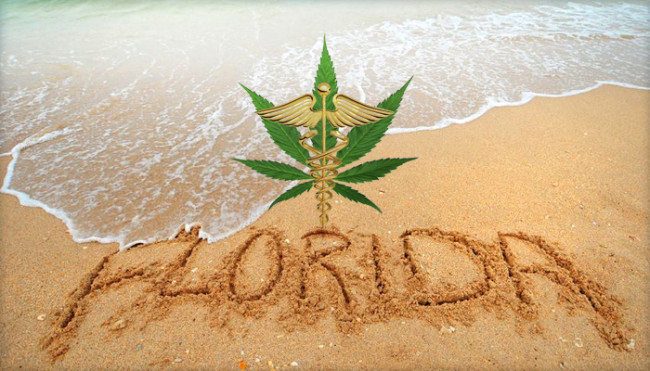 florida-and-recreational-cannabis