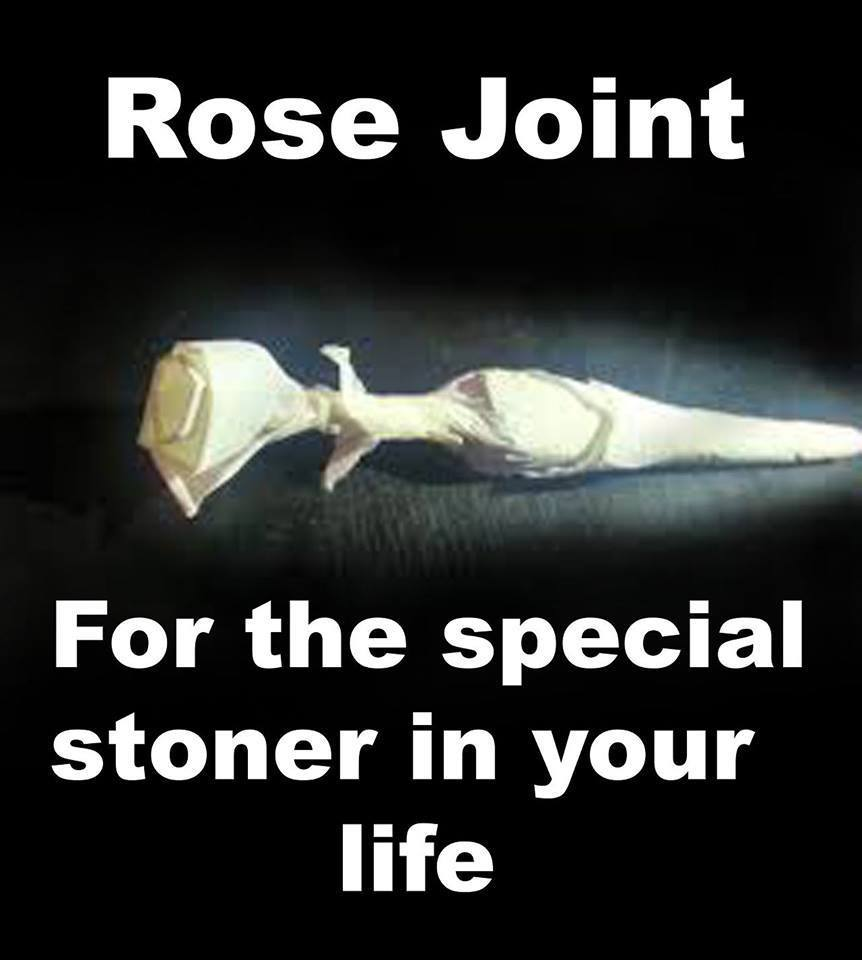 rose-joint-fun