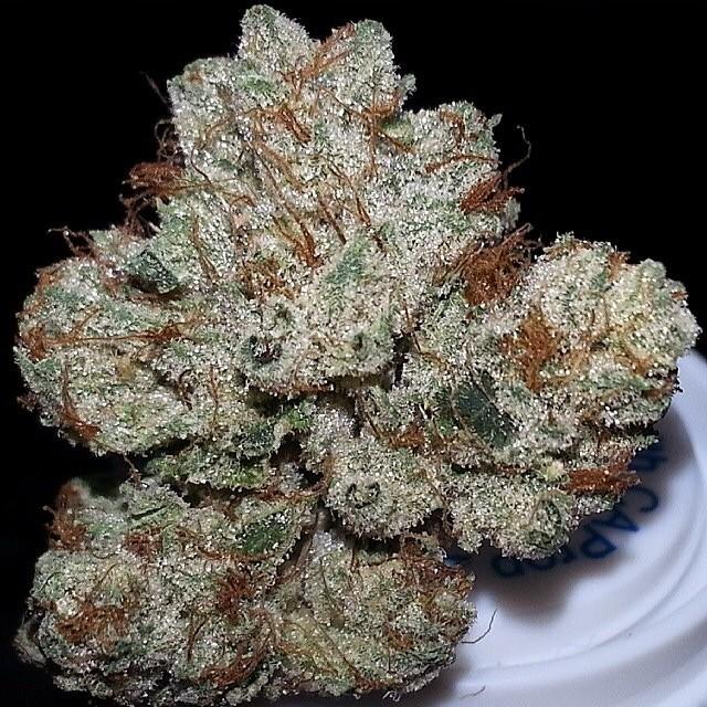 vsog-weed-sativa