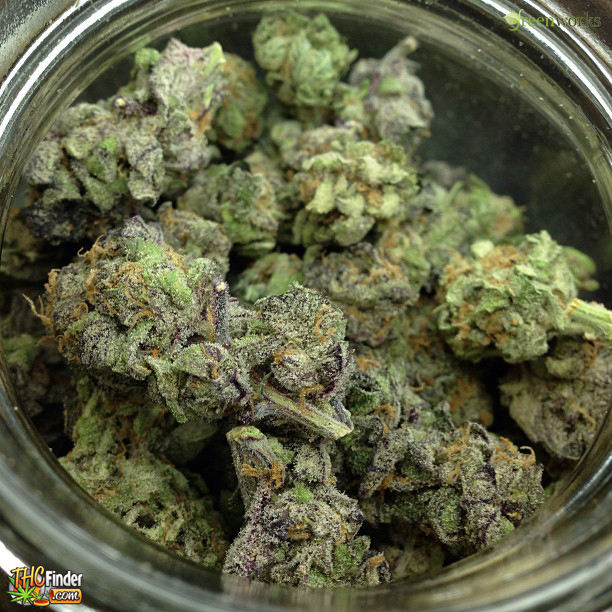 Granddaddy purple thc level submited images