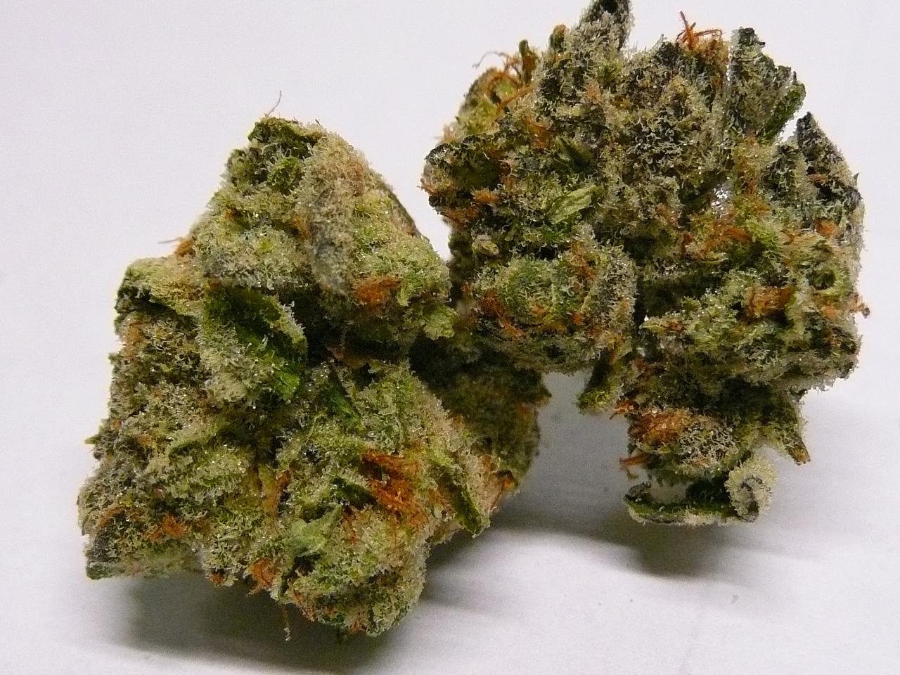 girl scout cookies nugs marijuana blog thc finder