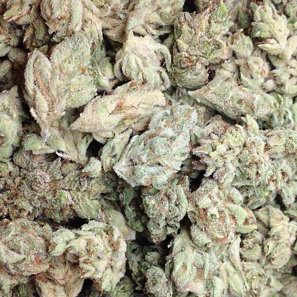 goji-og-cannabis-nugs