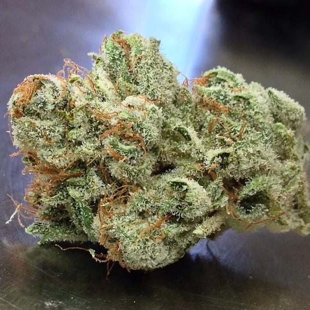 goji-og-medical-marijuana