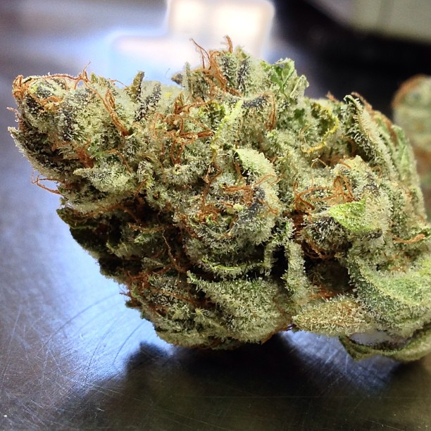 goji-og-cannabis