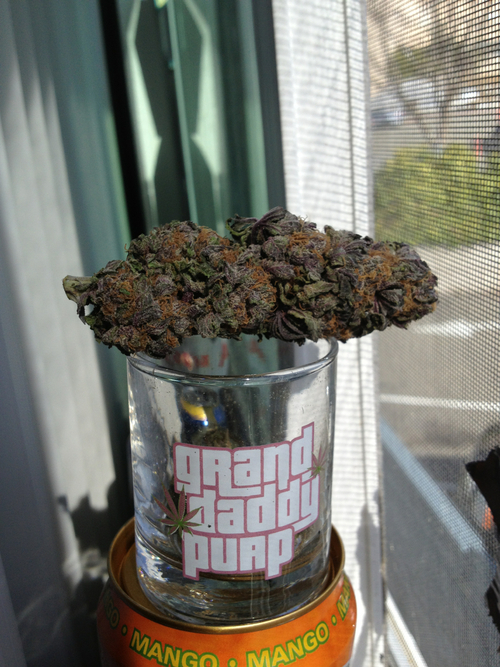 gdp-weed-indica