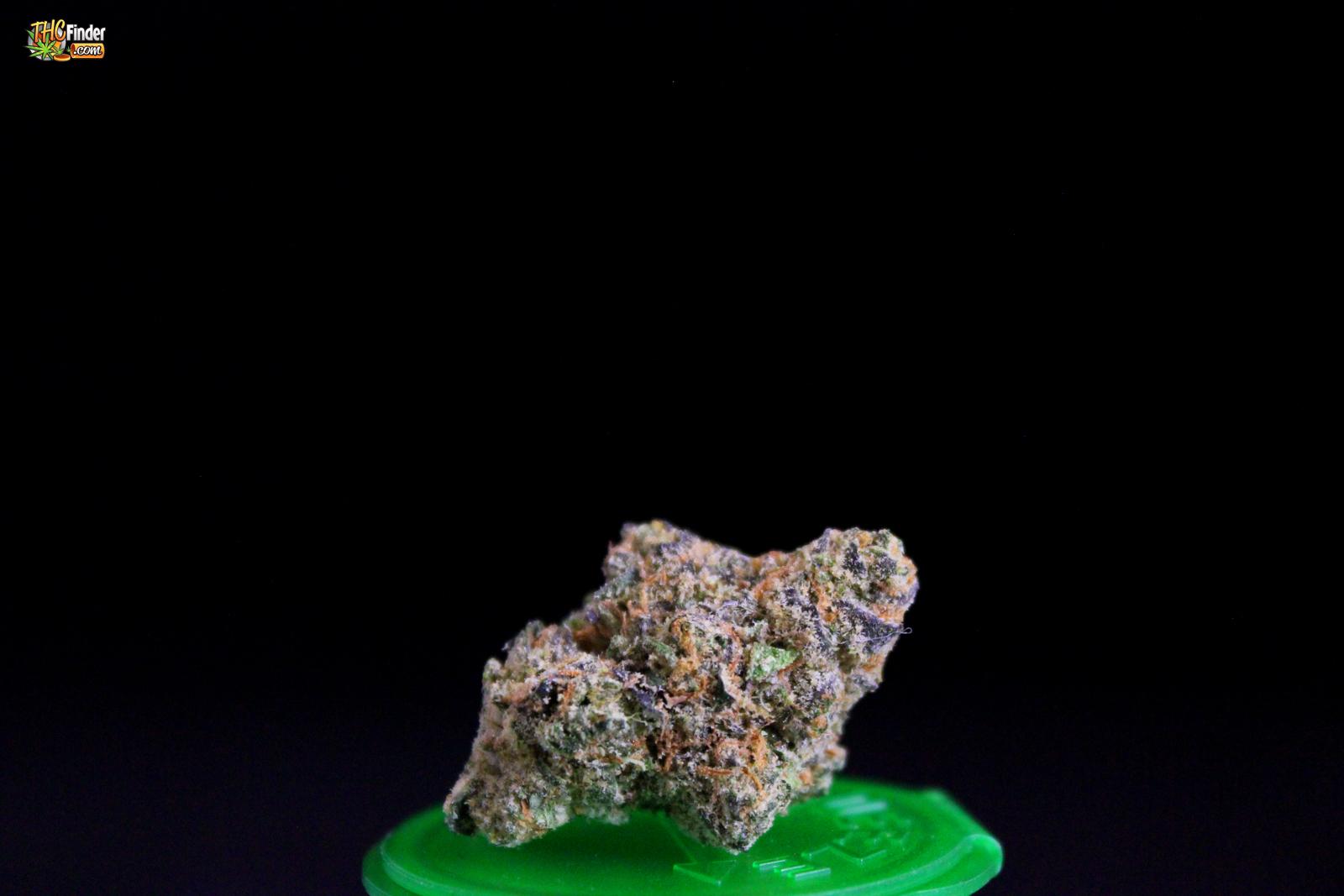 gsccannabis