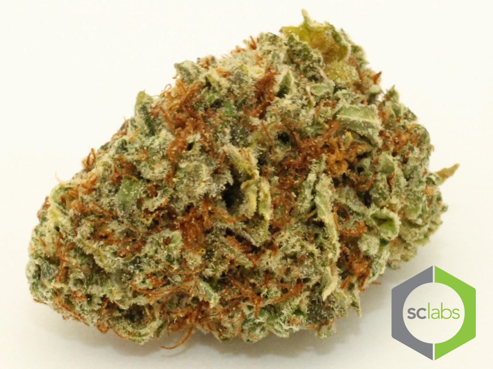 halo-og-cannabis