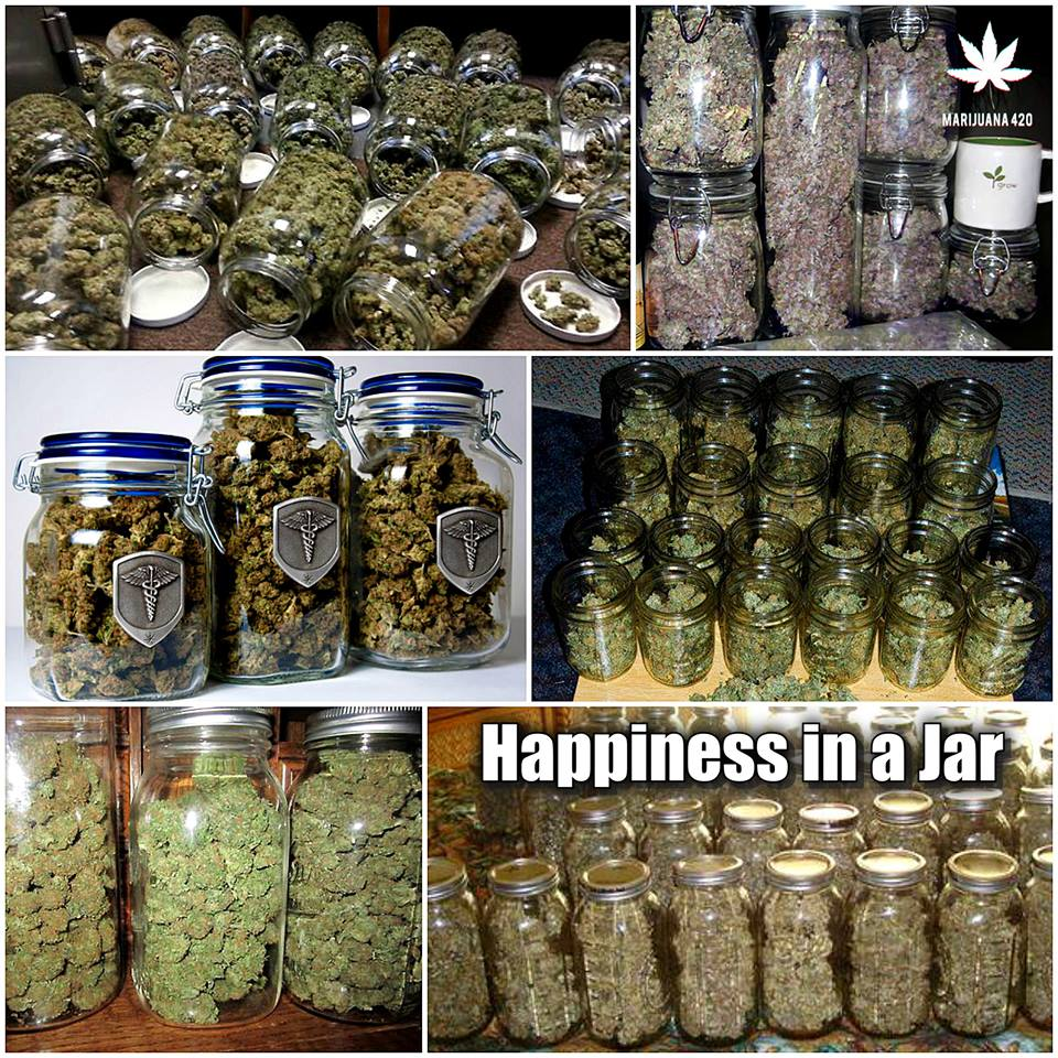happiness-in-a-jar-weeds