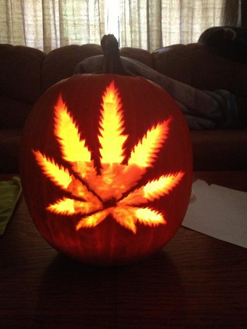 halloweed-pumkinfun