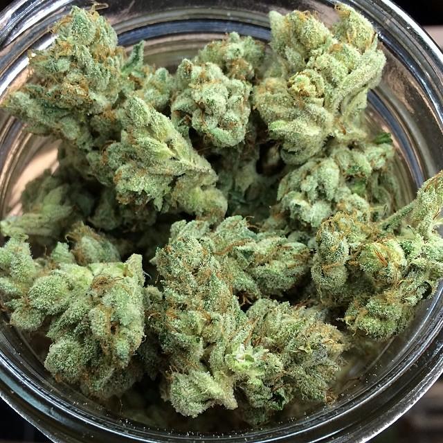 hell-walker-og-cannabis