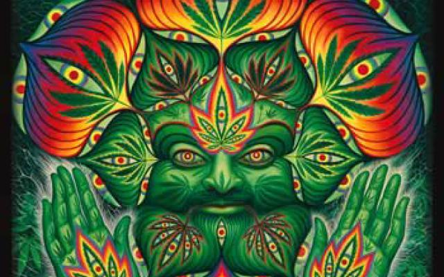 ht-cannabis-cup
