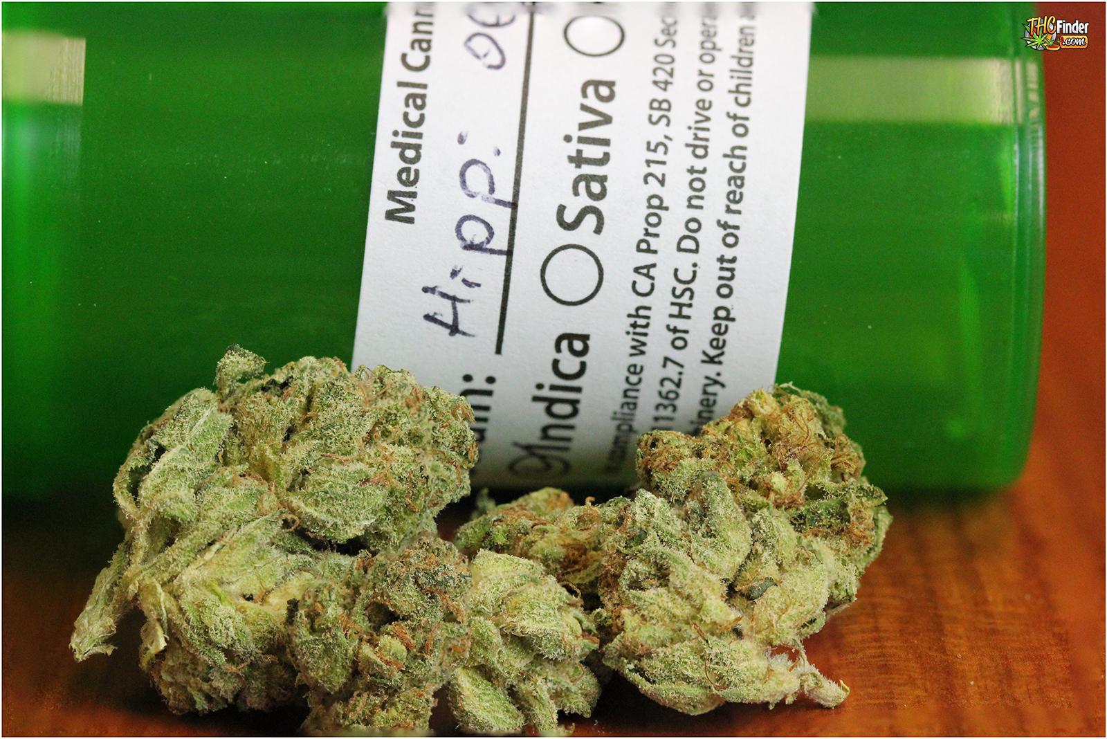 hippi-og-weed