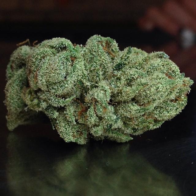 holygrail-og-cannabis