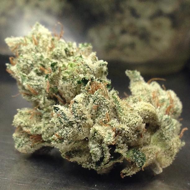 holy-grail-og-weed