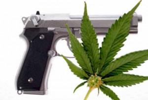 guns-n-weed-