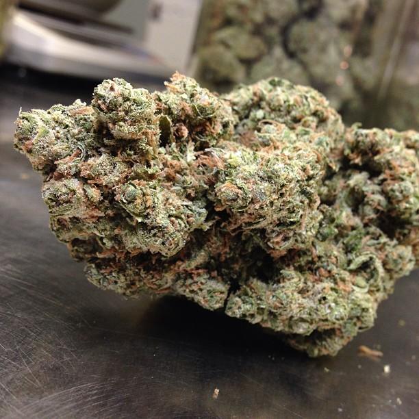 ingrid-mmj-weed