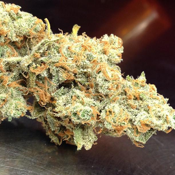 j1-weed