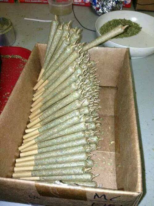 blunts-or-joints-fun