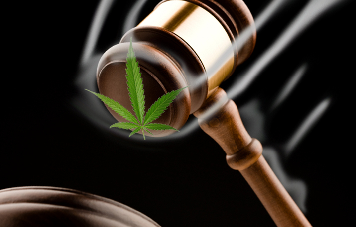 judge-refuses-to-jail-patient-for-growing-marijuana