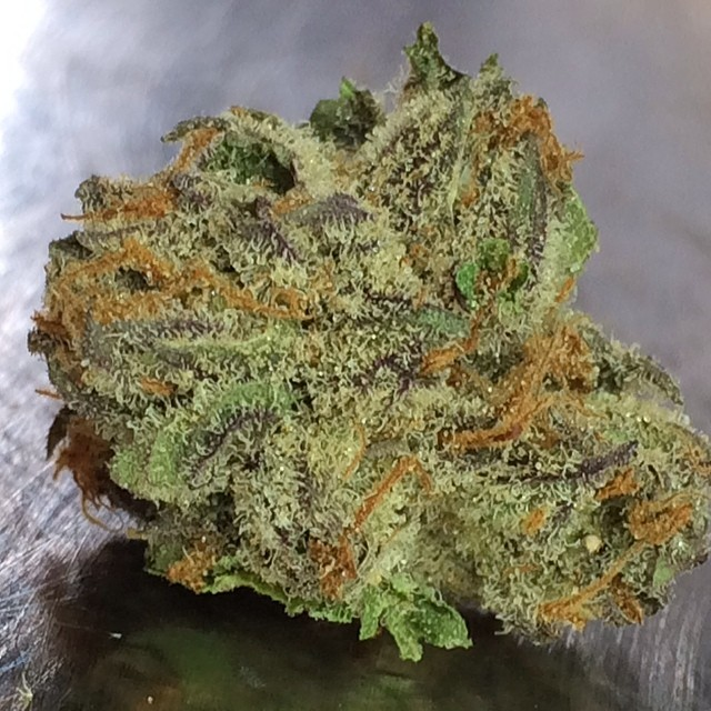 julius-caesar-weed