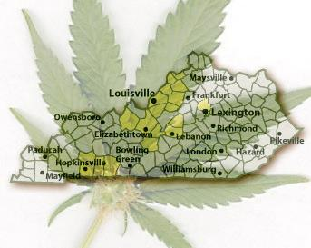 ky-medical-cannabis