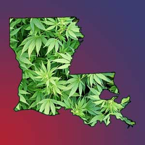 louisianians-favor-cannabis-legalization