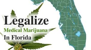 florida-mmj-favored