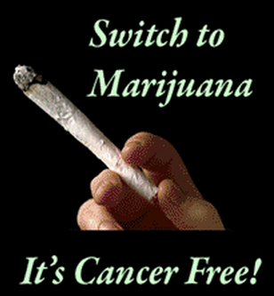 switch-to-cannabis