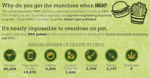 Marijuana fun facts   Fun Marijuana Blog   THC Finder ...