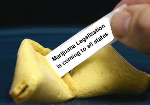 mj-legalization