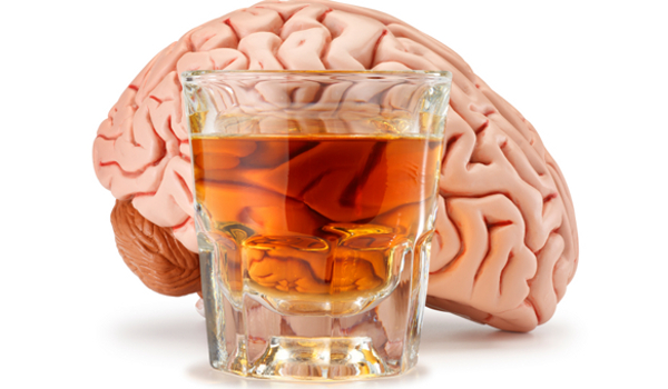 reducing-brain-damage-from-alcohol