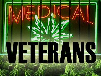 mmj-for-veterans