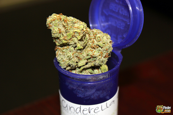 medical-cannabis-mmj