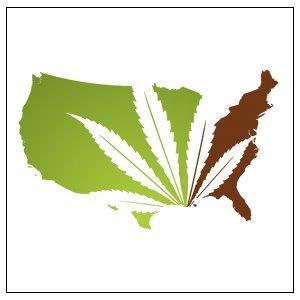 mi-marijuana-film