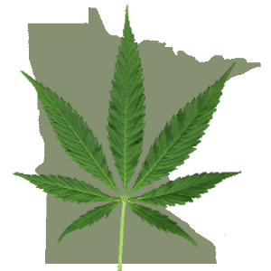 minnesota-22nd-state-to-legalize-medical-marijuana