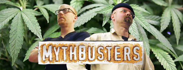 myths-about-weed