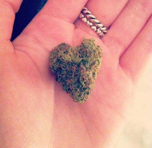 nug-bud-love