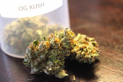 og-kush-weed