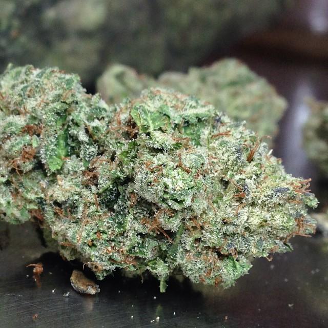 ogre-og-medical-weed