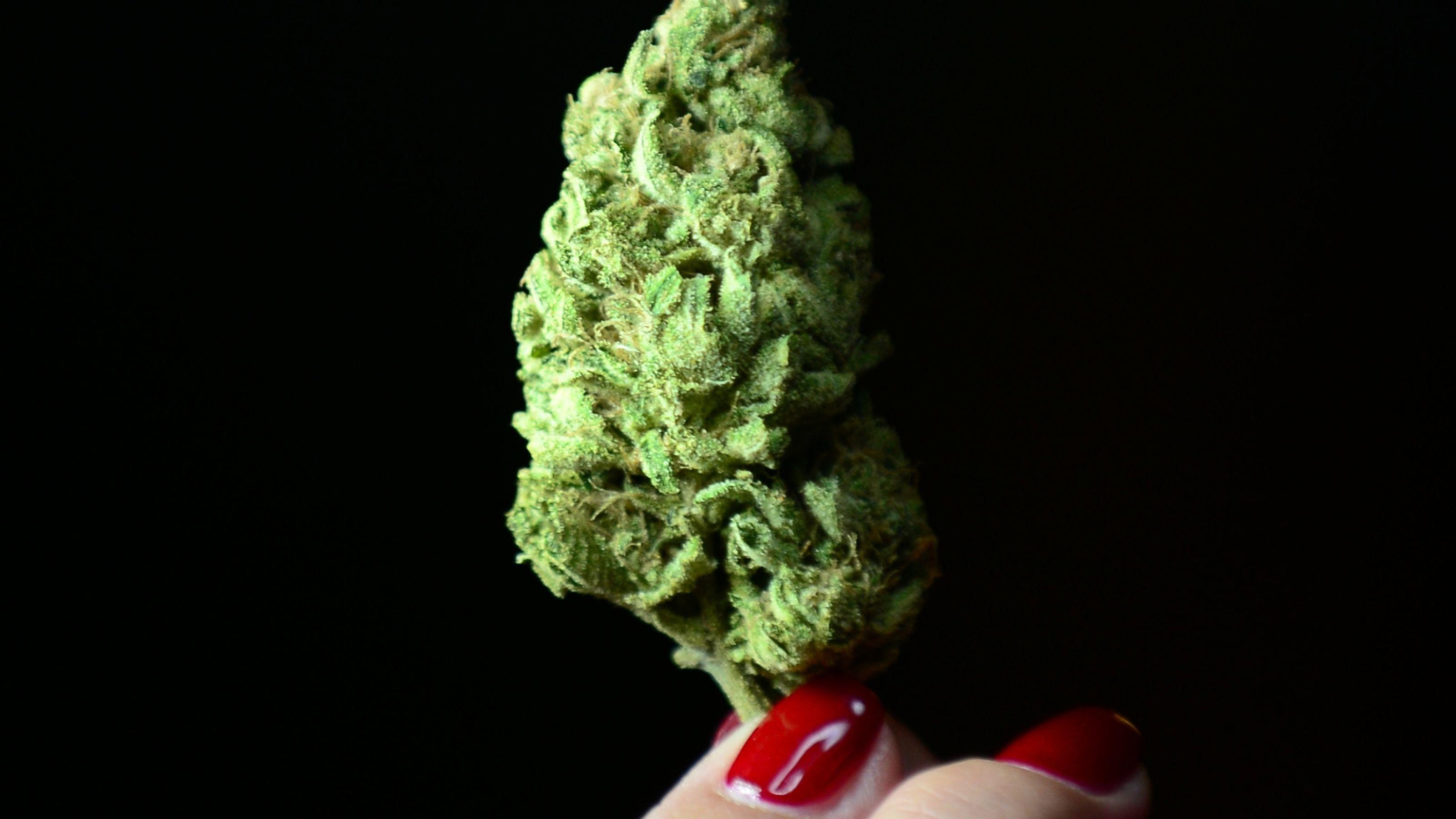 oregon-mj-legalization-winning