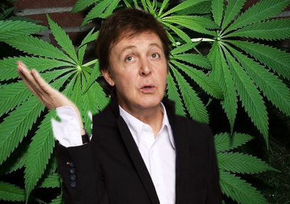 paul-loves-weed