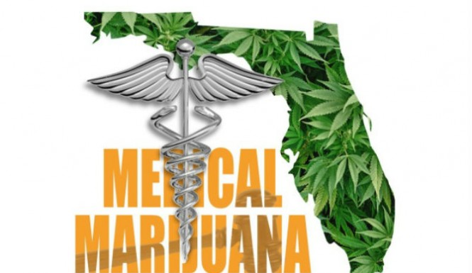 mmj-winning-in-fl-polls-show