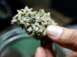 puerto-rico-mj-legalization