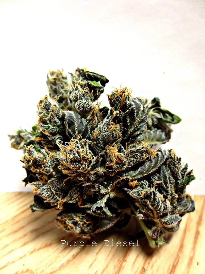 purple-diesel-marijuana