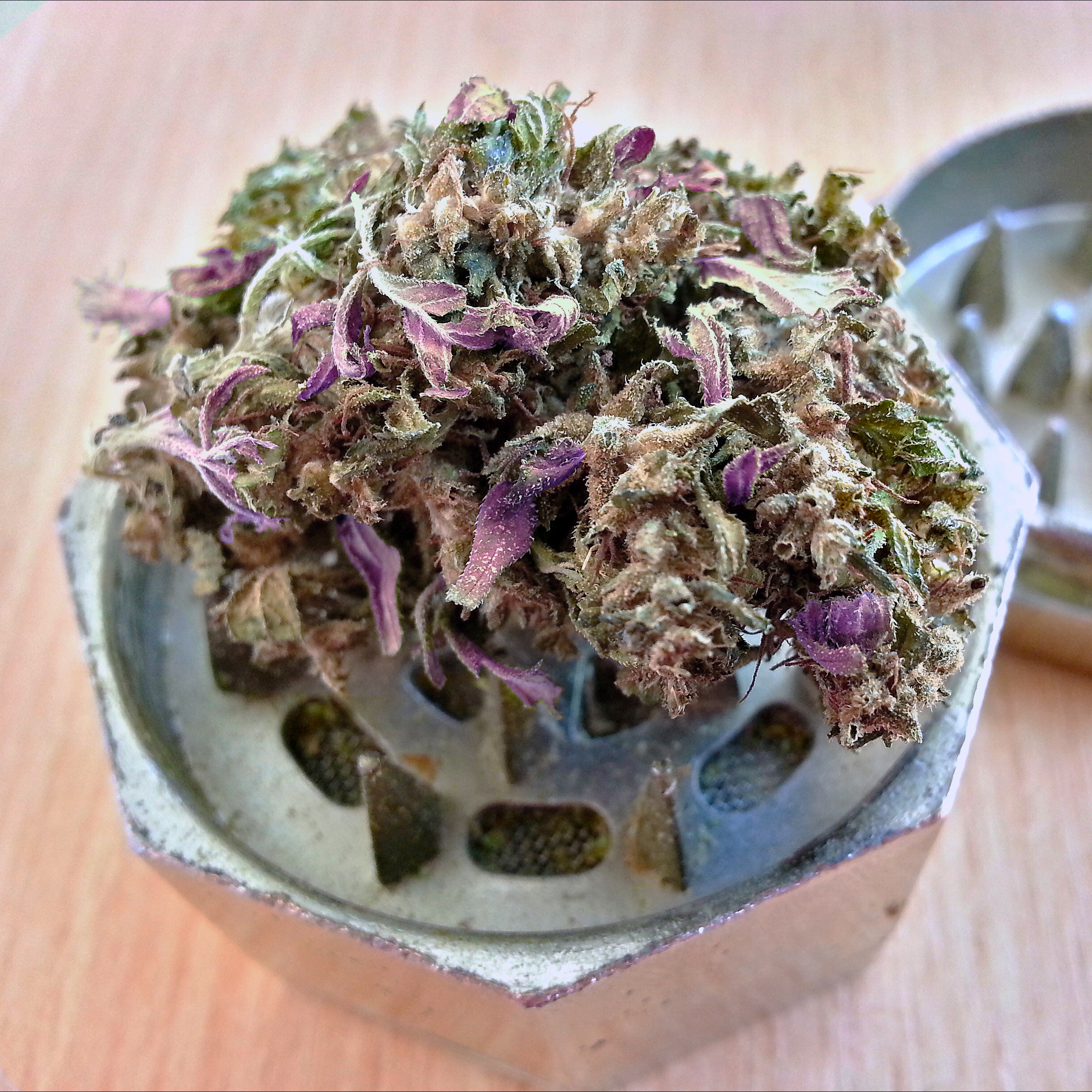 purple-haze-weed