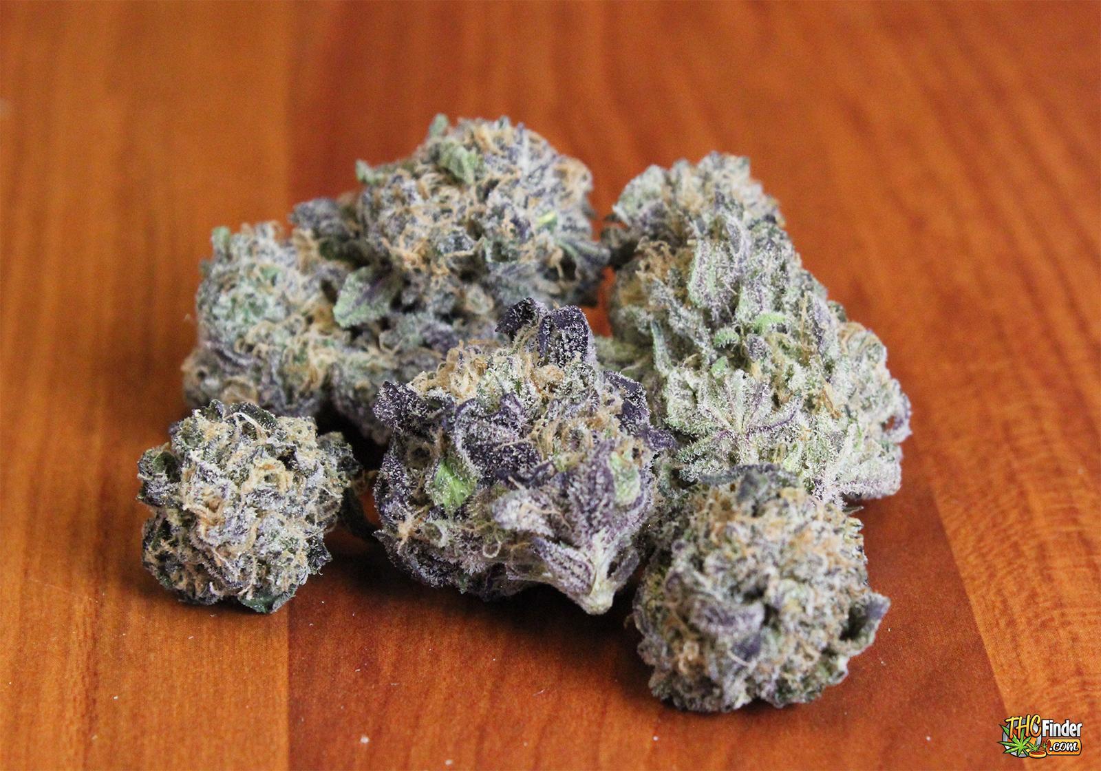 purple-zombie-mmj