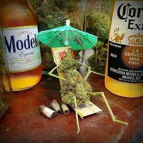 cannabis-fun