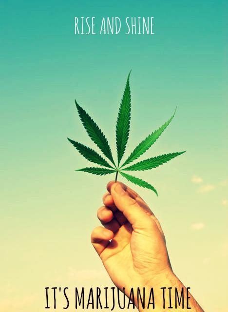 Good Morning All Caps : Rise and shine it s marijuana time fun