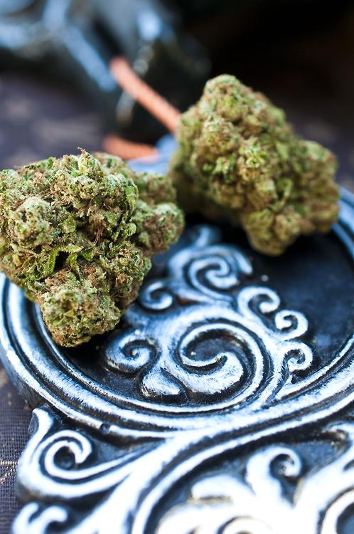 rockstar-og-weed