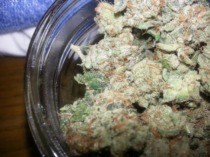 sfv-og-cannabis